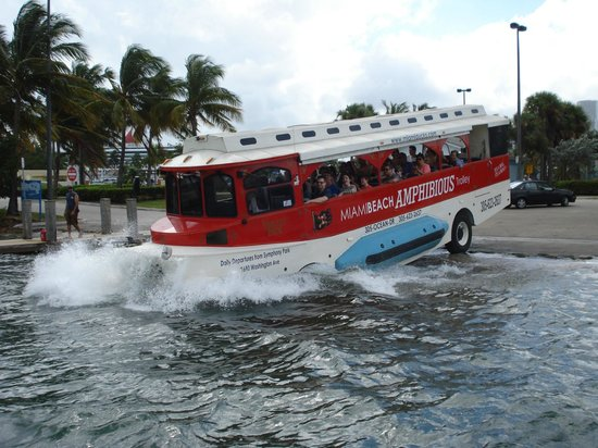 Miami Duck Tours Miami Pirate Duck Tours