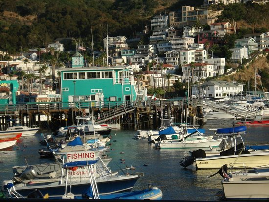 Cheap Hotels In Catalina Island Ca