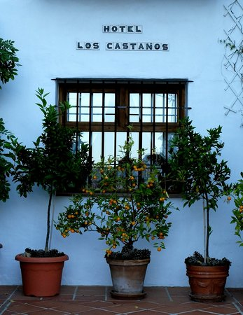 Photo of Hotel Los Castanos Cartajima