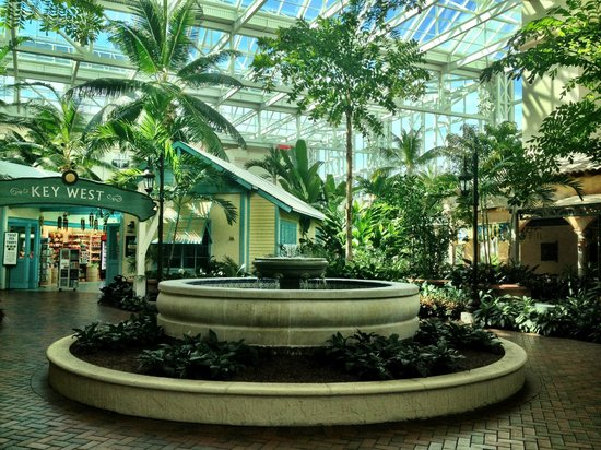 Gaylord palms resort convention center