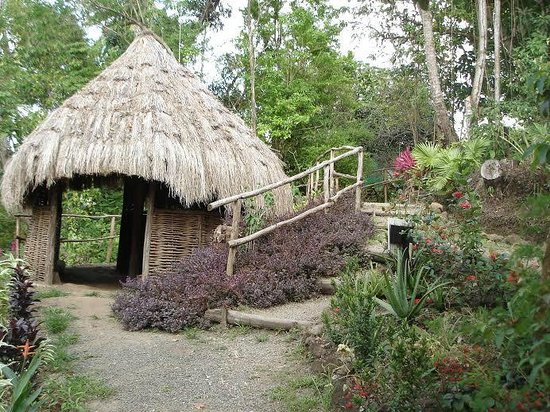 Amerindian Hut Picture Of Lushan Country Life Tours