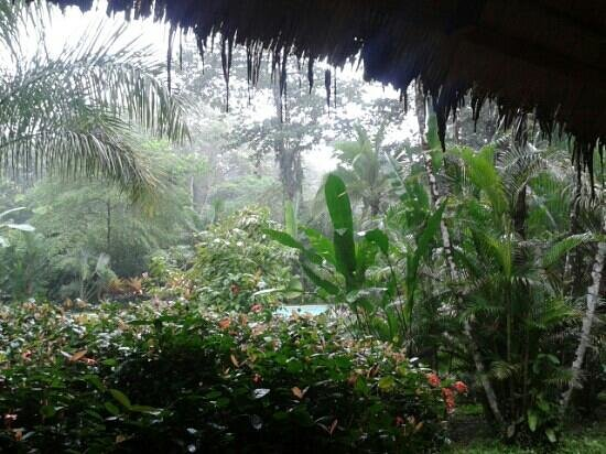 Hotel Shawandha Lodge: view from the restaurant <3