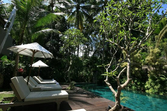 pool mit sch nen liegen picture of puri sunia resort ubud tripadvisor. Black Bedroom Furniture Sets. Home Design Ideas