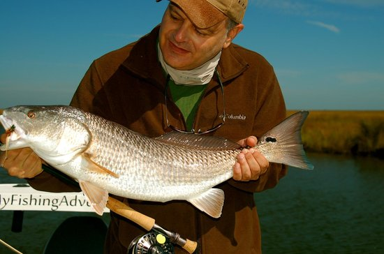 Fly fishing st george island florida picture of my for My fishing advisor