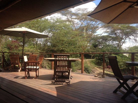 Wildebeest Eco Camp: Lounge