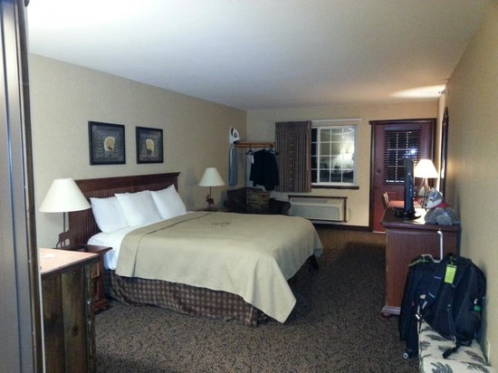 Stoney Creek Hotel & Conference Center  - Columbia: king size room