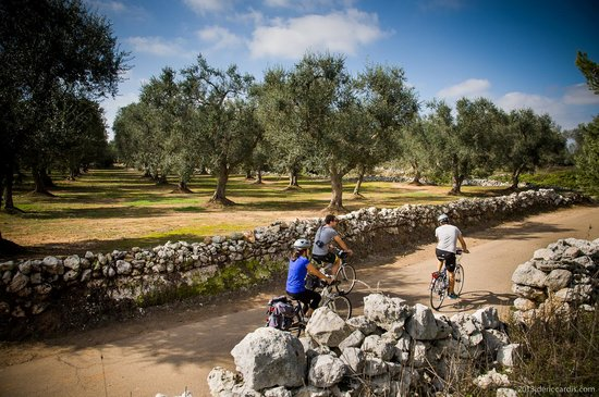 Salento Bici Tour - Day Tours
