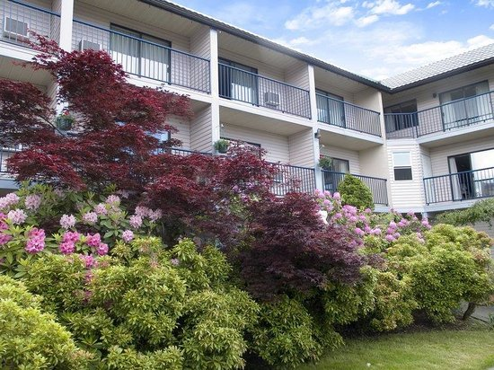 Photo of Best Western Northgate Inn Nanaimo