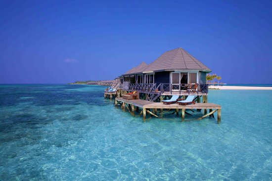Download this Kuredu Island Resort And Spa picture