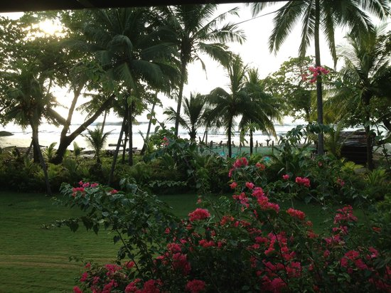 Peaks 'n Swells Surf Camp: On the Beach villas as your home..great pool
