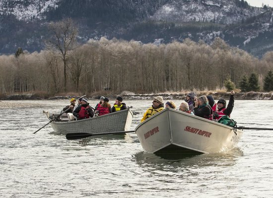 Skagit River Guide Service - Private Tours