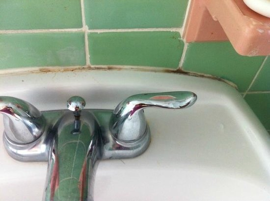 New Yorker Boutique Hotel: Mould along the sink