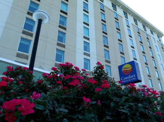 Photo of Comfort Inn & Suites Presidential Little Rock