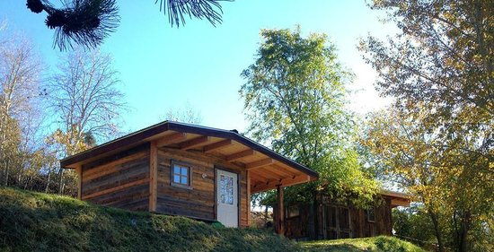 Pine Near RV Park & Campground: Mining Shack Camping Cabins