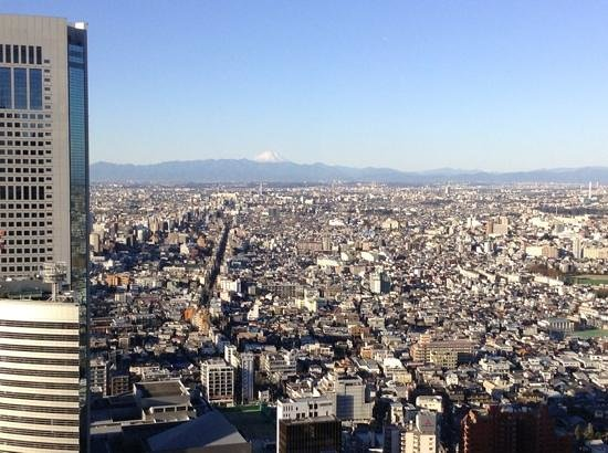 how to go to mount fuji from tokyo