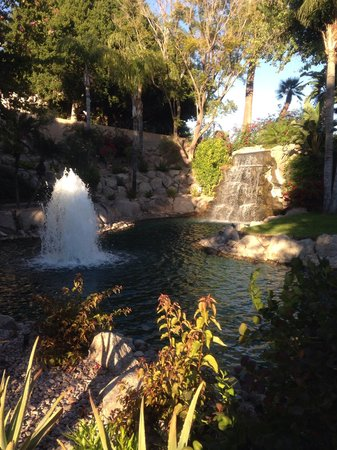 The Phoenician, Scottsdale: From the garden