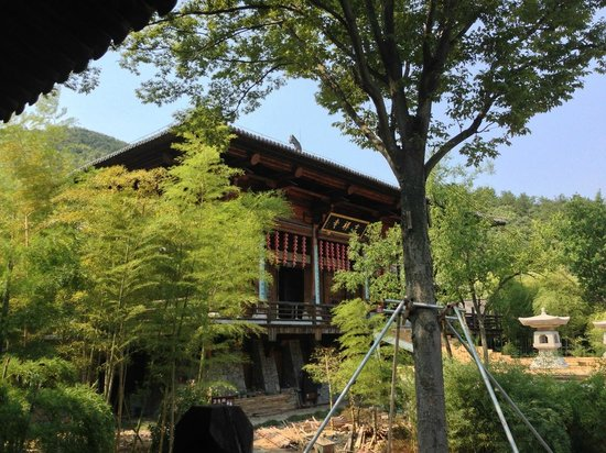 park county buddhist singles Removed from the distractions and busy mind of city life, shambhala mountain center has been hosting buddhist meditation retreats and other spiritual retreats for more than three decades.