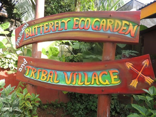Image result for puerto princesa butterfly garden