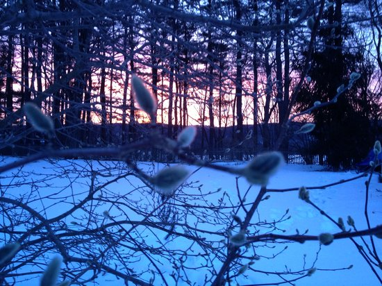 Bellows Walpole Inn: Winter Sunset