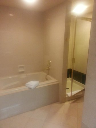 Bath tub shower picture of luxor las vegas las vegas for Luxor baths