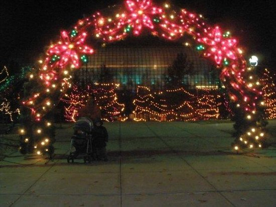 Christmas Lights Picture Of Myriad Botanical Gardens Oklahoma City Tripadvisor