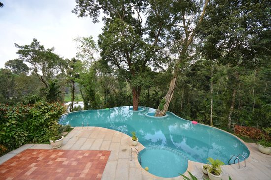 Swimming pool picture of the windflower resort and spa coorg suntikoppa tripadvisor Hotels in coorg with swimming pool