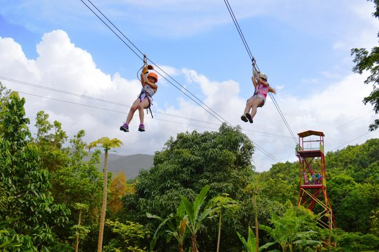 Rain Forest Zipline Corp.: Having fun in a race in the parallel lines! Awesome! Come and enjoy with us!