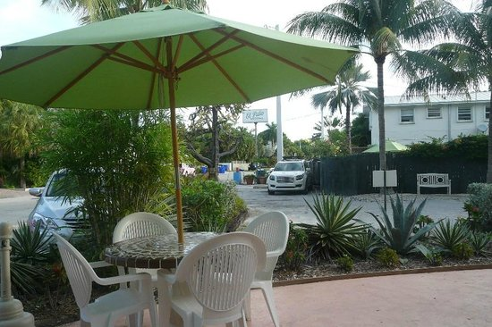 the swimming pool picture of el patio motel key west tripadvisor