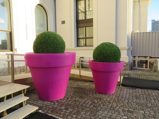 The big pink plant pots next to the front door Plants next to front door