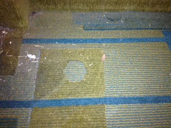 La Quinta Inn Amarillo West Medical Center: The way the floor looked the entire stay