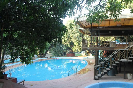 Pool Area Picture Of Windmill Resort Alibaug Tripadvisor