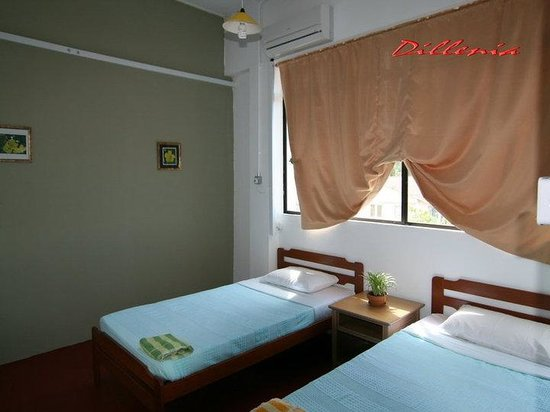 Dillenia Guest House: Twin Room