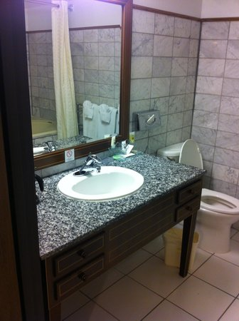 BEST WESTERN Big Bear Chateau: Clean bathroom