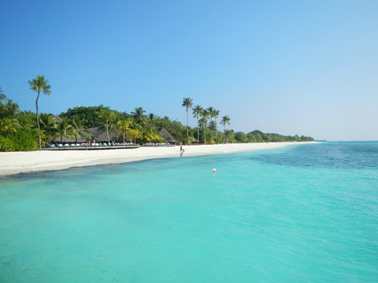 Download this Picture Kuredu Island Resort And Spa picture