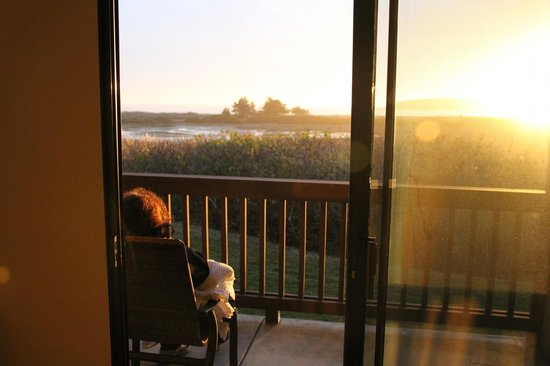 Bodega Bay Lodge: Love with a View