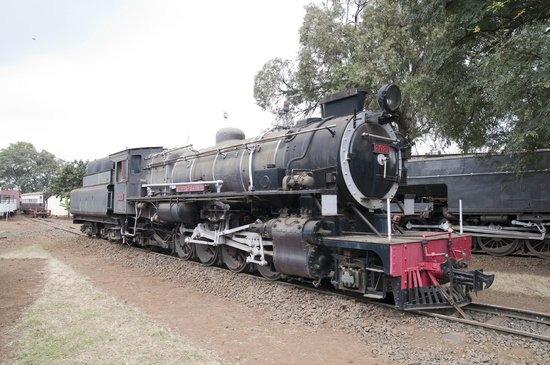 Railway Museum: Lots of old trains outside