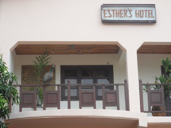 Esther's Hotel