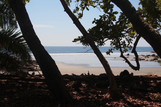 Ylang Ylang Beach Resort: View from our porch