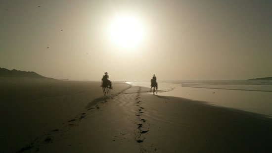 Anwar Horse Treks - Private Day Tours