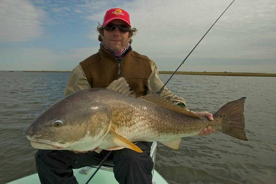 Captain shaughnessey with a nice cobia picture of go for Everglades fishing guide