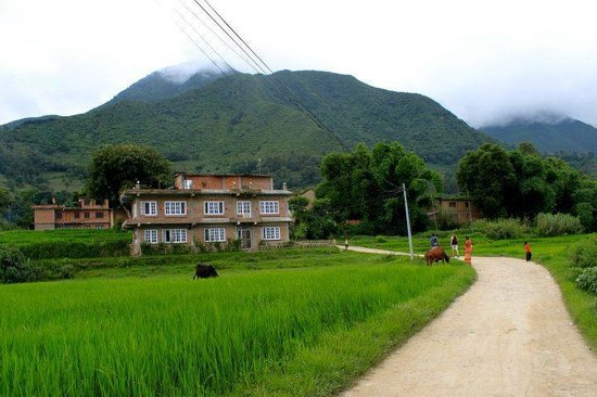 View of Homestay Nepal (88397736)