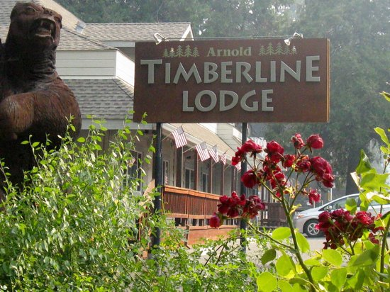 Photo of Timberline Lodge Arnold