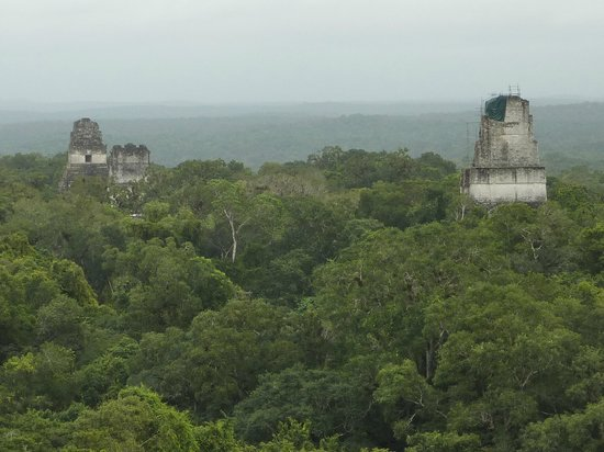 Tikal National Park Facts Tikal Tikal National Park