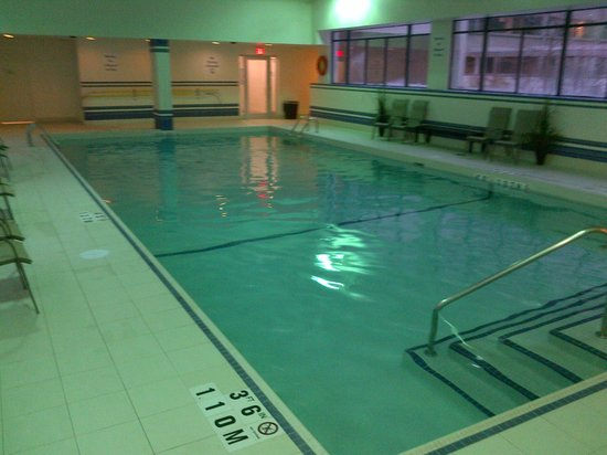 pool picture of holiday inn toronto downtown centre. Black Bedroom Furniture Sets. Home Design Ideas