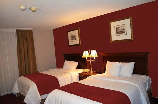 Super 8 Chatham: Guest Room
