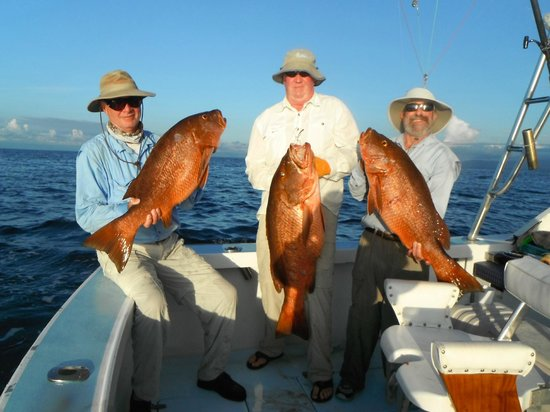 Jumpin jack sail picture of fishing costa rica with big for Fishing charters falmouth ma