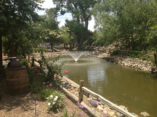 Rose Garden Picture Of Wilson Creek Winery Temecula