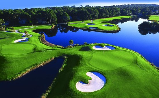The Golf Courses of Palmetto Dunes