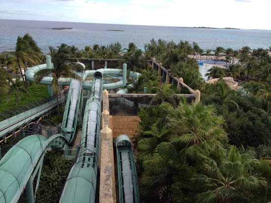 Slides for Terrace view atlantis royal towers