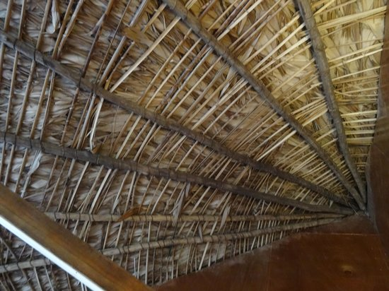 Libassa Ecolodge: Roof structure